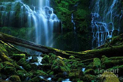 Proxy Falls Oregon Poster by Bob Christopher