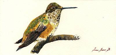 Rufous Hummingbird Poster by Juan  Bosco
