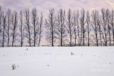 Rural Winter Landscape Poster