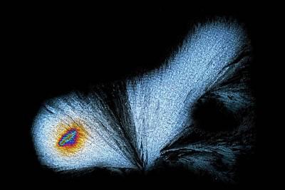 Serine Amino Acid Poster by Antonio Romero