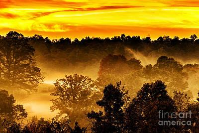 Sunrise And Fog Poster