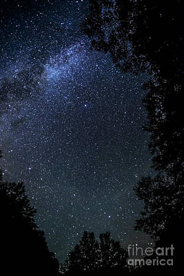 The Milky Way Over Cranberry Wilderness Poster