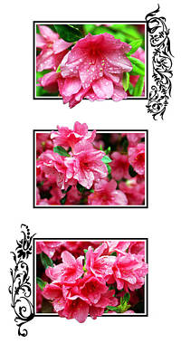 3 Tier Azalea Poster by Ryan Burton