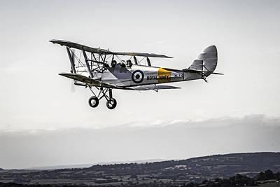 Tiger Moth Poster