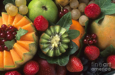 Variety Of Fruits. Poster