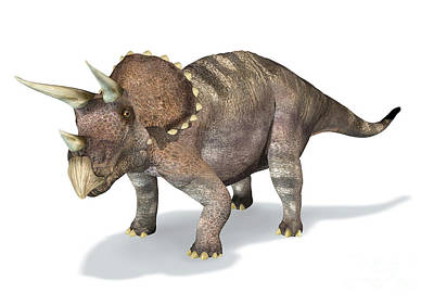 3d Rendering Of A Triceratops Dinosaur Poster by Leonello Calvetti