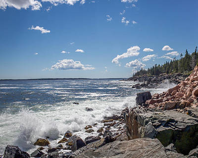 Poster featuring the photograph Acadia National Park by Trace Kittrell