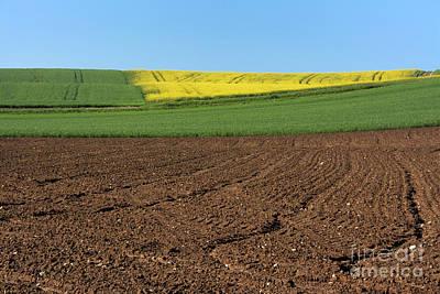 Agricultural Landscape. Auvergne. France. Poster by Bernard Jaubert