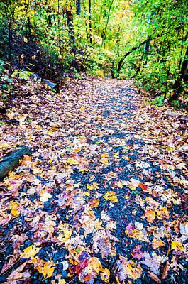 Autumn Country Road Poster by Alex Grichenko