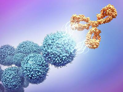 Cancer Drug Attacking Cancer Cells Poster