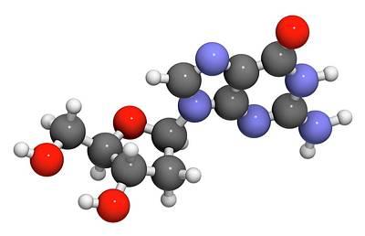 Deoxyguanosine Nucleoside Molecule Poster
