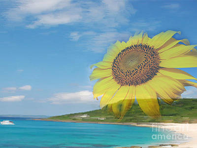 Sunflower Facing The Oceans  Poster
