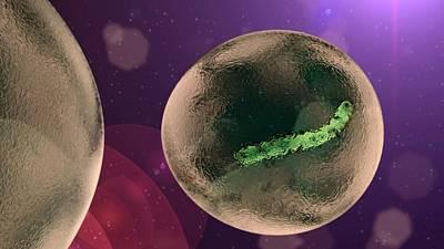 Ebola Virus Particle Poster by Karsten Schneider