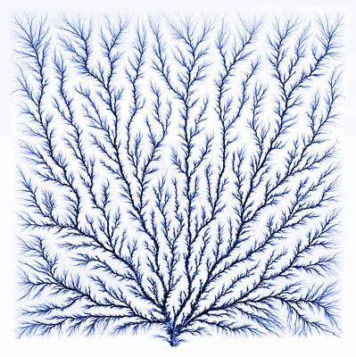 Electron Tree Or Lichtenberg Figure Poster by Science Source