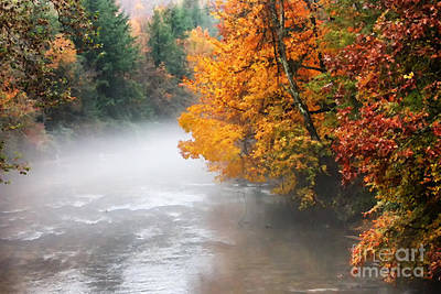 Fall Color Gauley River Poster by Thomas R Fletcher
