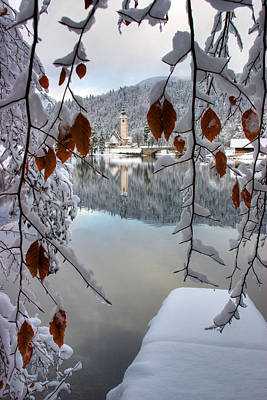 Lake Bohinj In Winter Poster