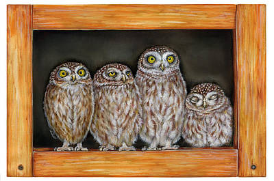 4 Little Owls Poster by Marina Durante