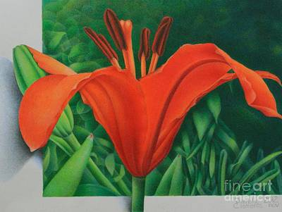 Poster featuring the painting Orange Lily by Pamela Clements