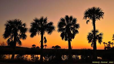 4 Palms In After Glow Poster by Richard Zentner