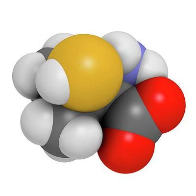 Penicillamine Drug Molecule Poster