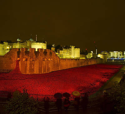 Poppies Tower Of London Night Poster