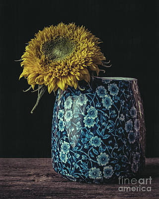 Sunflower Poster by Edward Fielding