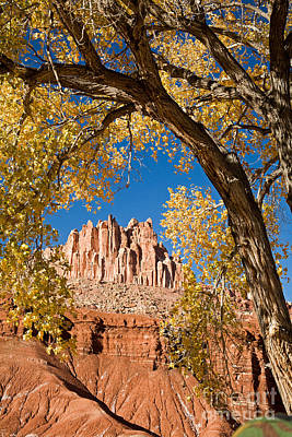 The Castle Capitol Reef National Park Poster