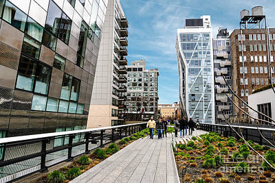 The High Line Urban Park New York Citiy Poster by Amy Cicconi