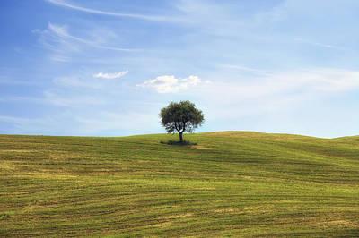 Tuscany - Montalcino Poster