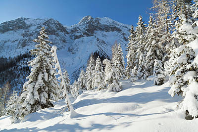 Valley Gaistal With Snow During Deep Poster