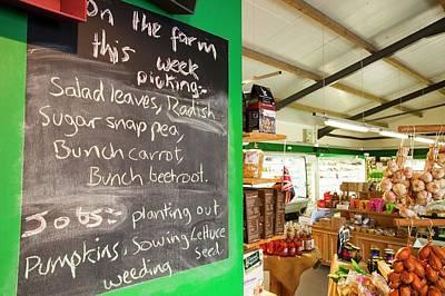 Washingpool Farm In Bridport Poster by Ashley Cooper