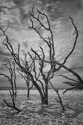 Botany Bay Beach Poster by Gestalt Imagery
