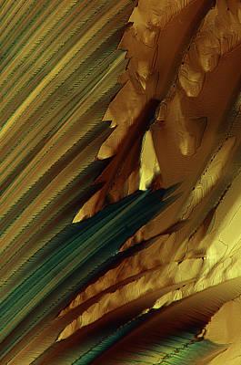Citric Acid Crystals Poster by Marek Mis
