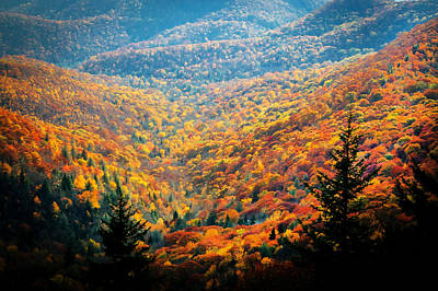 Fall Foliage Great Smoky Mountains Painted Poster by Rich Franco