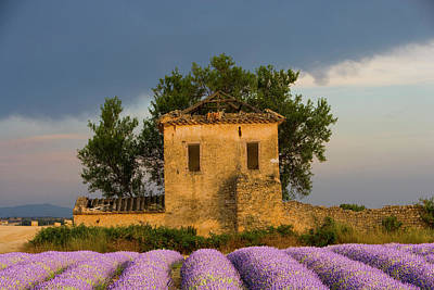 France, Provence Poster by Jaynes Gallery
