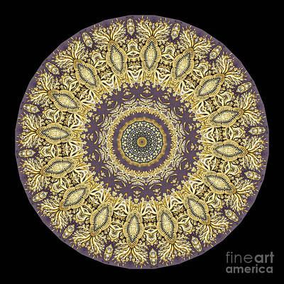 Kaleidoscope Ernst Haeckl Sea Life Series Poster