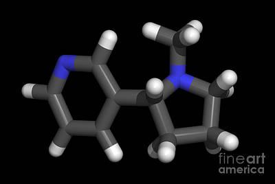 Nicotine Molecule Poster by Friedrich Saurer