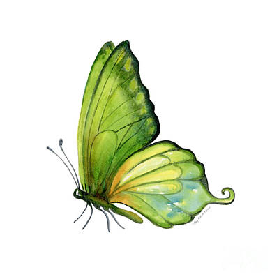 5 Sap Green Butterfly Poster