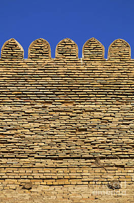 The Walls Of The Ark At Bukhara In Uzbekistan Poster by Robert Preston