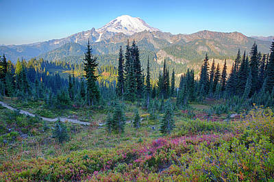 Usa, Washington State, Mount Rainier Poster by Jamie and Judy Wild