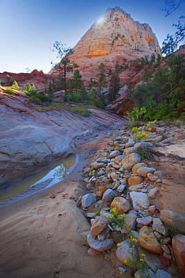Poster featuring the photograph Zion National Park Utah Usa by Richard Wiggins