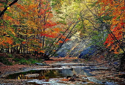 Autumn Stream Poster by Frozen in Time Fine Art Photography
