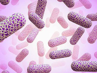 E. Coli Bacteria Poster by Maurizio De Angelis
