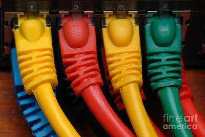 Ethernet Cables Plugged Into Router Poster by Amy Cicconi