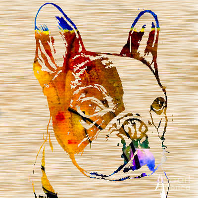 French Bulldog Poster by Marvin Blaine