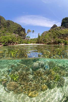 Indian Ocean, Indonesia, Raja Ampat Poster