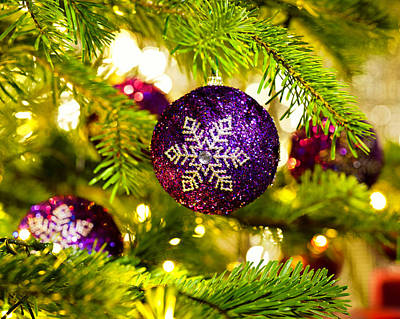 Ornament In A Christmas Tree Poster