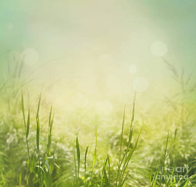 Spring Background Poster