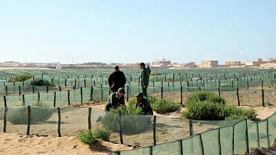 Desertification Prevention Poster