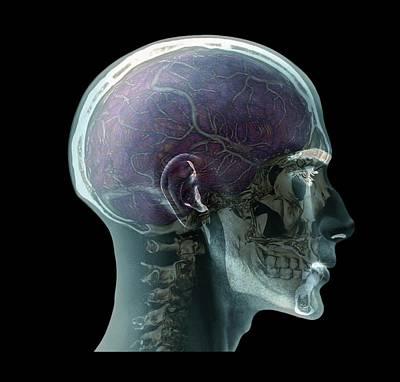 Human Head Poster